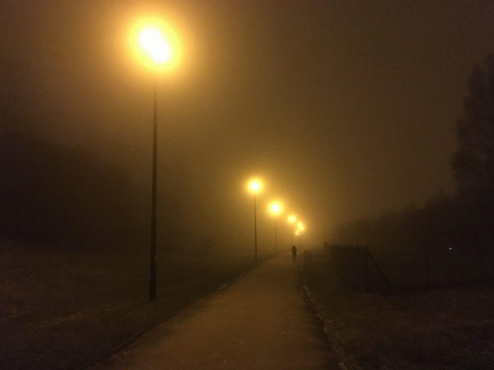 zwyczajna mgła wąwozowa